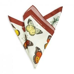 Le papillon bordeaux